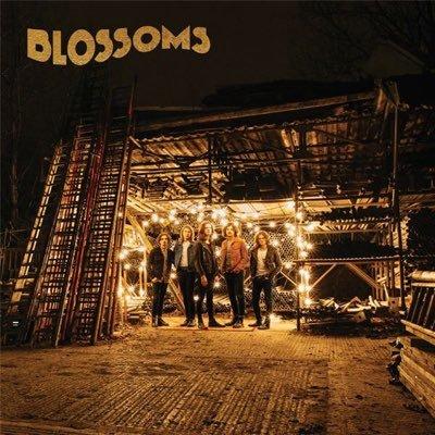 Blossoms Twitter PP